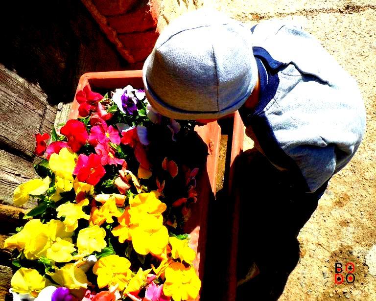 bimbo e fiori