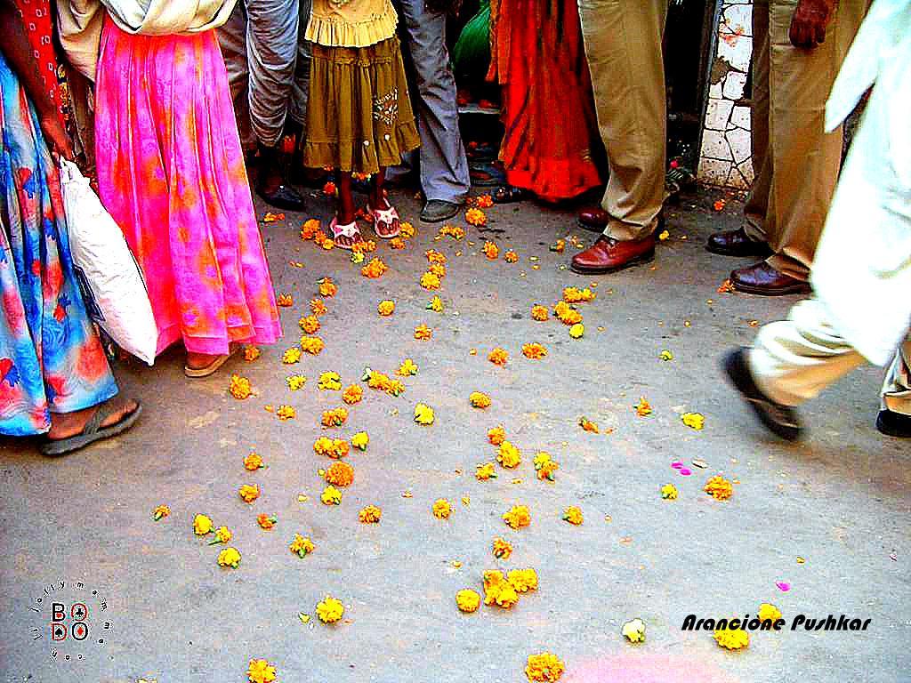 india_arancione