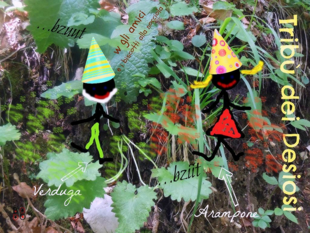 folletti nel bosco