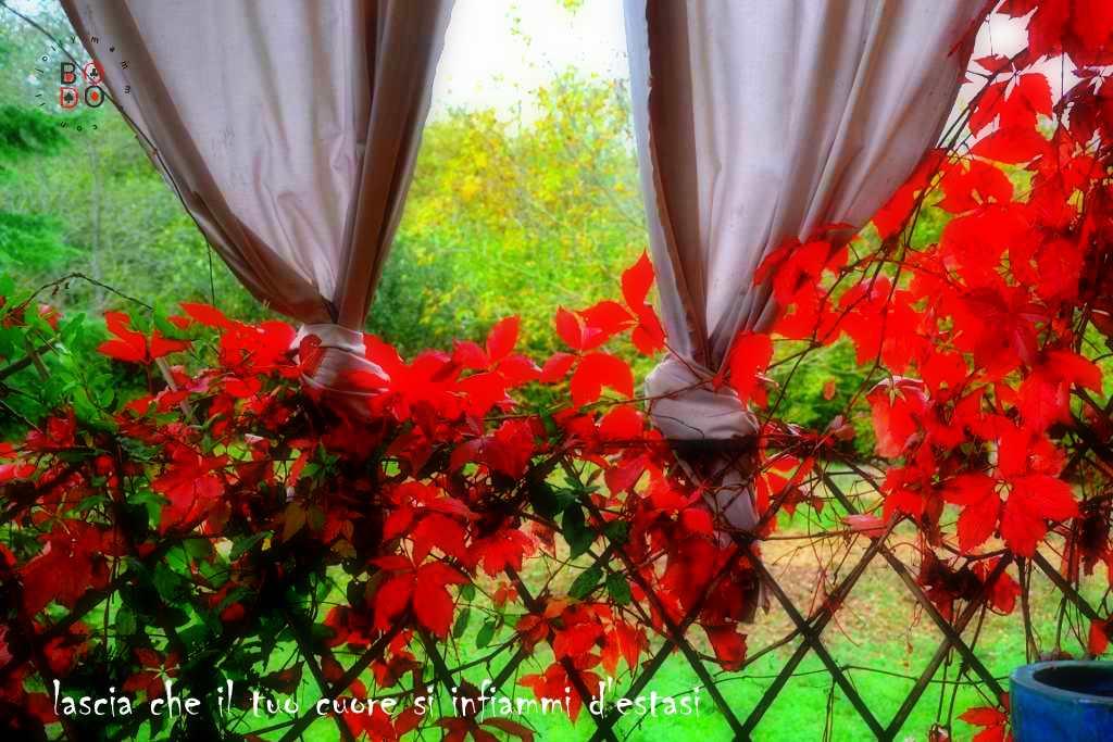 vista sull'autunno
