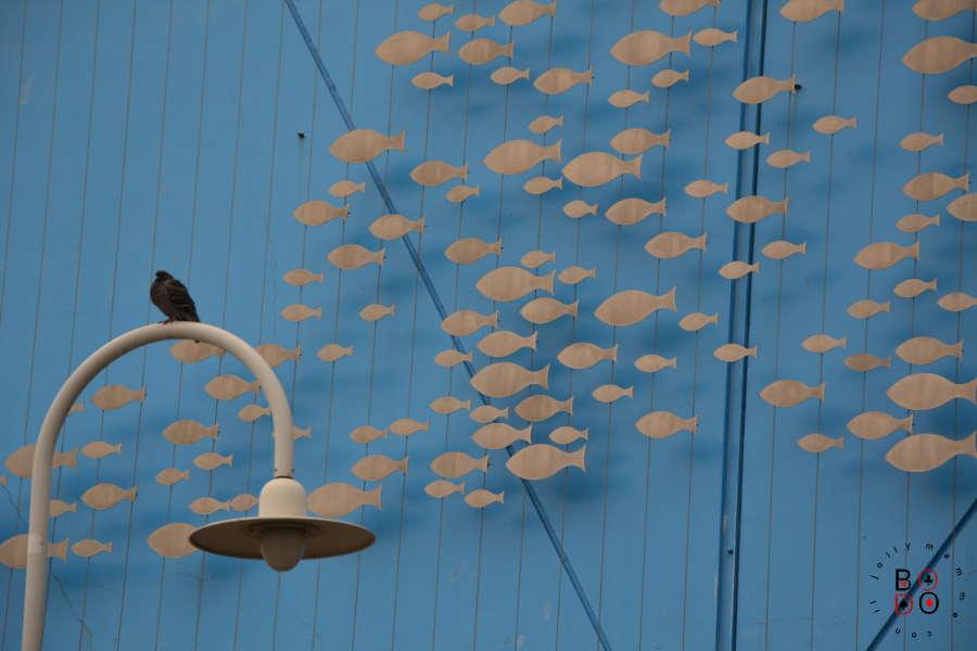 acquario di Genova, esterno