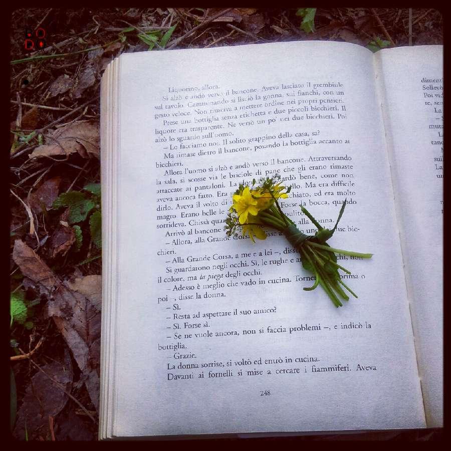 un libro e un mazzetto di fiori