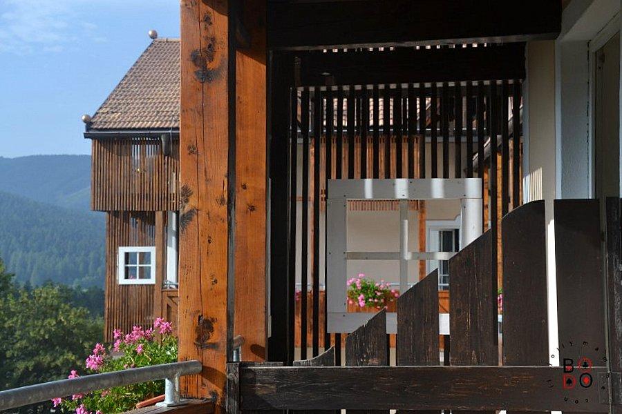 alpen hotel eghel folgaria