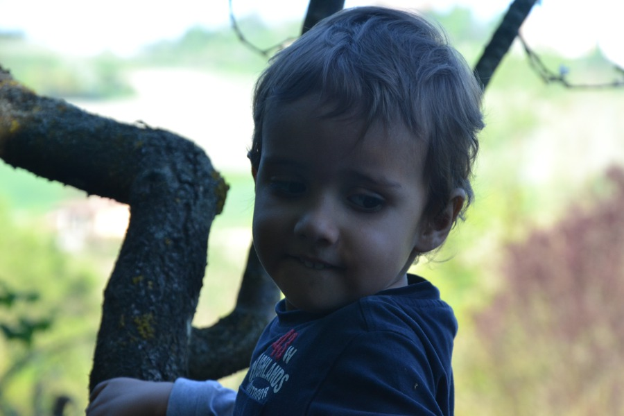 bambino nell'orto
