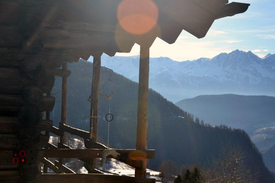 chamois, valle d'aosta