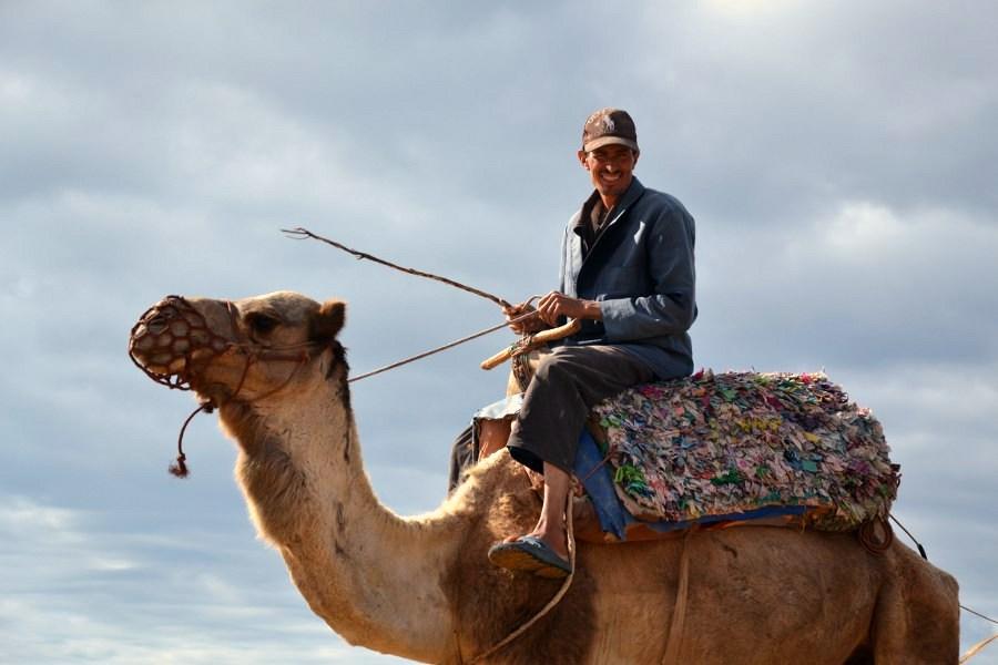 dintorni essaouira, marocco