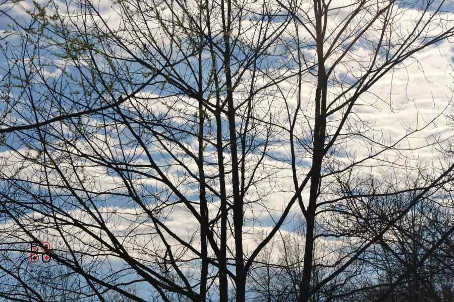 cielo d'aprile