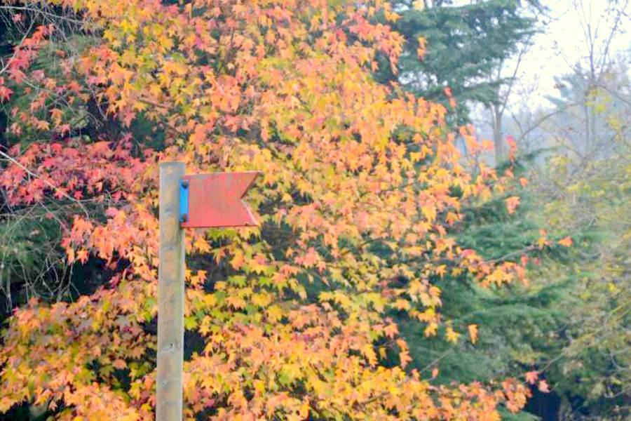 ottobre in campagna