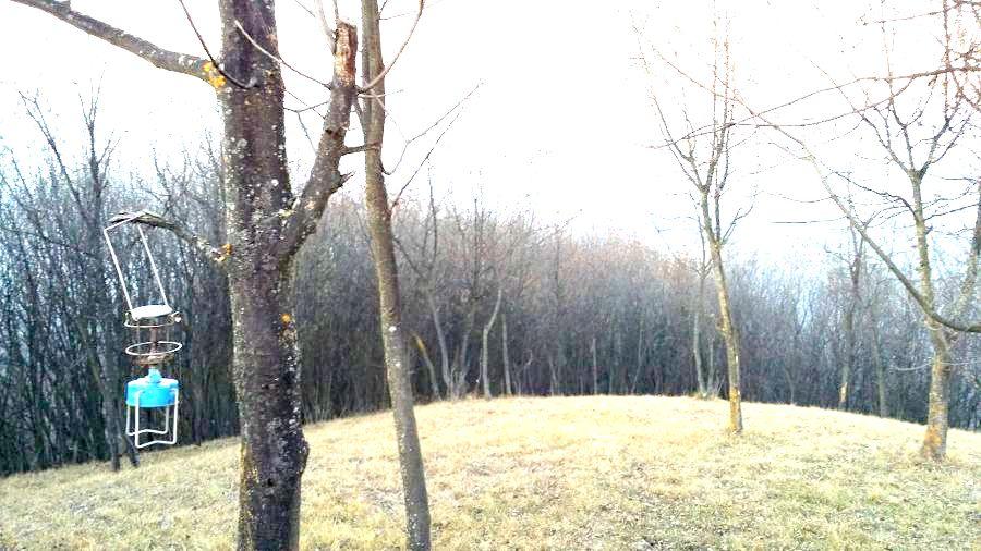 trekking in monferrato