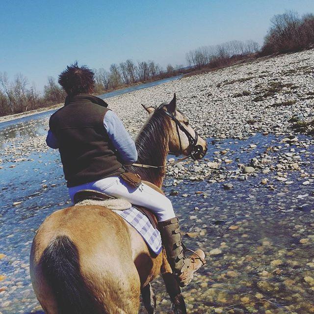 marzo 2016, cavallo