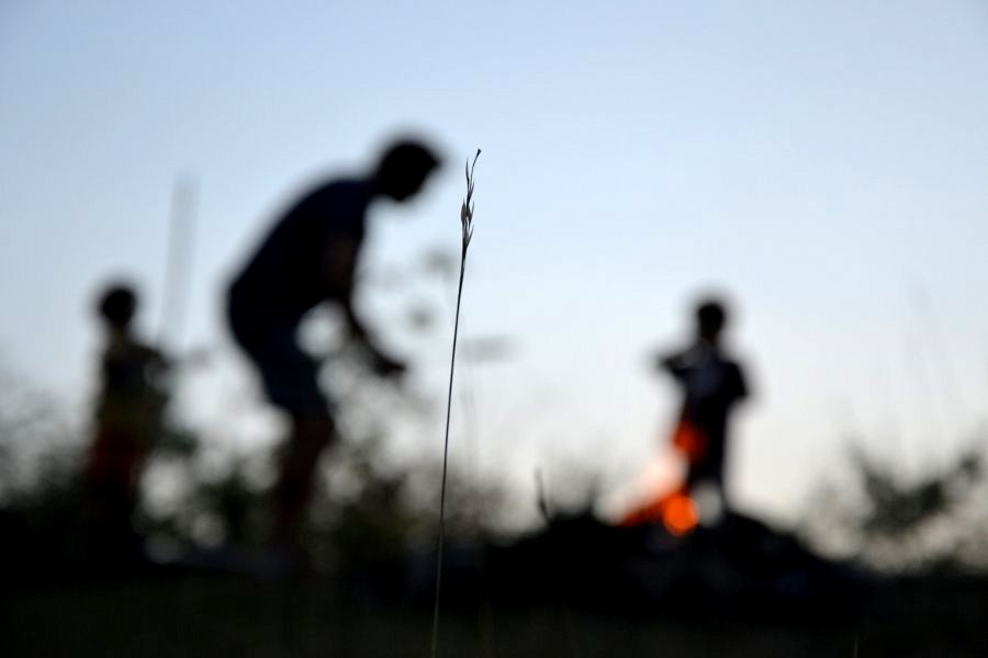 tramonto nel bosco - monferrato