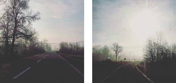 nebbia in Monferrato